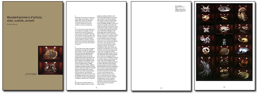 2013 Neoart3 wunderkammer Gallerie d'Italia Mario Taddei catalogo pages 840 A