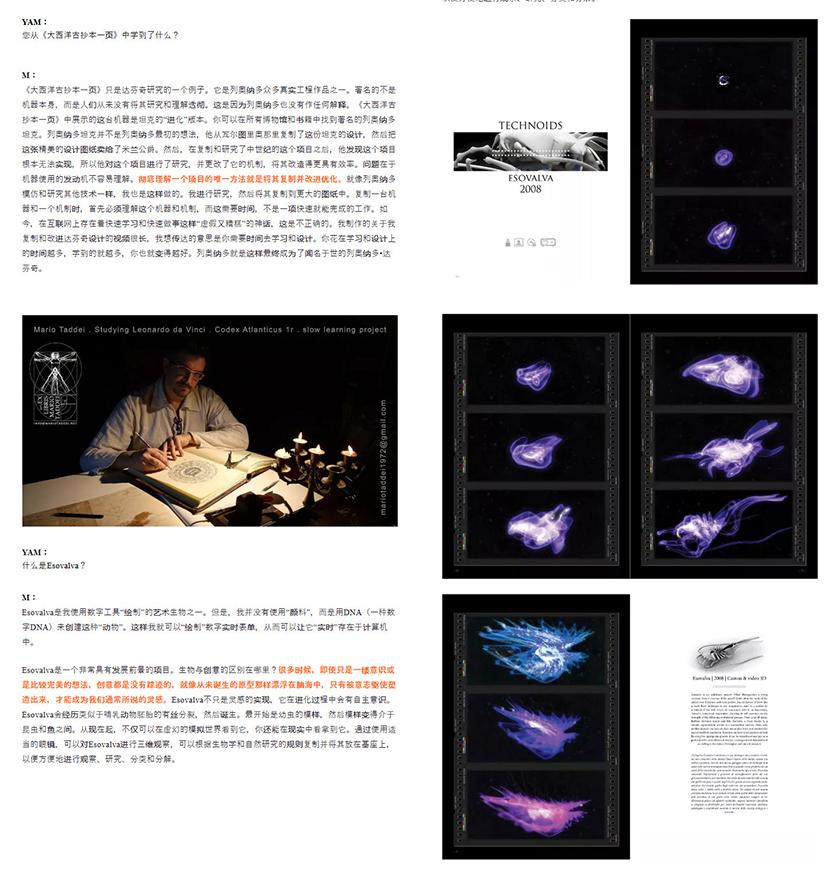Neoart3 reviews - Quingdao Yellow Box Art Museum - Mario Taddei Interview